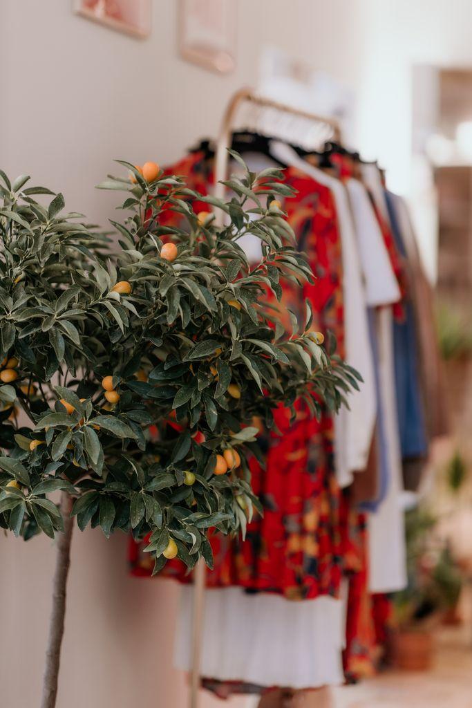 vegetalisation boutique sezane nantes